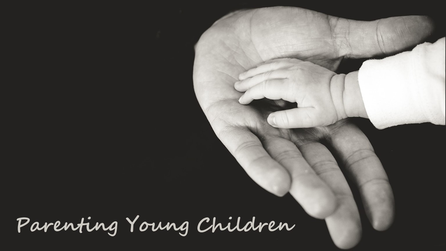 Parenting Young Children 3